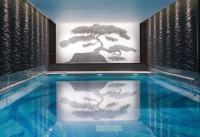 Chuan Spa-Swimming Pool 2